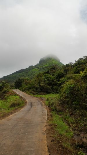 Mansoon Trek To Tikona