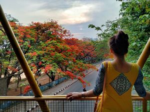 Bangalore is on flame and the views are breathtaking. #flametree #gulmohar