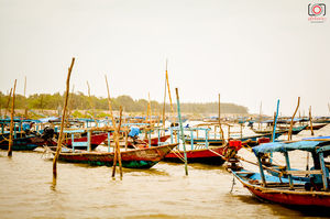 Chilika Lake - The Wetland & a Brackish Water Lagoon