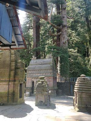 Pine,Bells and Kilmora