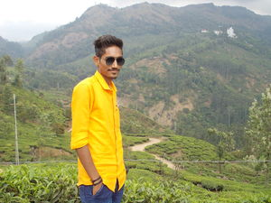 Tea Garden at Top of the Hill @Munnar Kerala. Background @Chennai Express Movie Song.