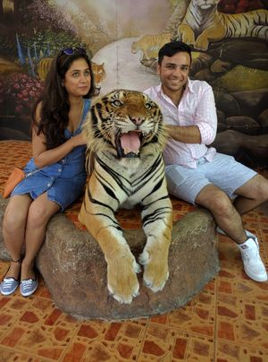 Sriracha Tiger Zoo Nong Kham Chon Buri Thailand 1/undefined by Tripoto