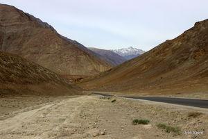 Ladakh Diaries - 1