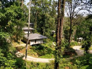 Amidst the forest in the western ghats - Ayatana Coorg #summerescape #issSummerBaharNikal