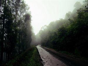 Chikmagalur – Mullayanagiri & Baba Budangiri