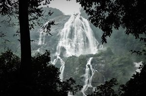 Dudhsagar Falls – Milky Waterfalls in Goa