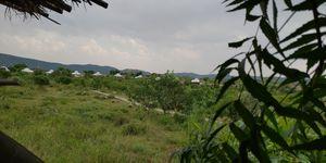 A perfect Gateway in Middle of Jungle #photoblog #delhigetawaydestination #sariska