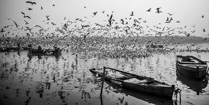 Early morning in yamuna ghat ,Delhi