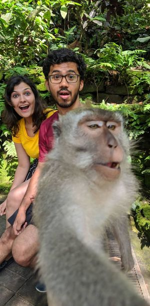 Monkeying together  . . . . #SelfieWithAView #TripotoCommunity