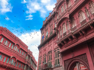 You shouldn't exclude Bikaner from your Rajasthan Trip. Here's why.
