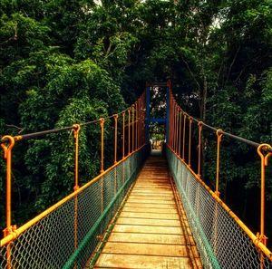 Solo trip to Mysore - Day 3