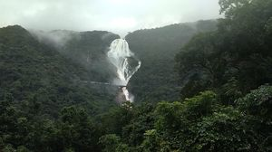 Dudhsagar Waterfalls - Rain,Trek and Thrill