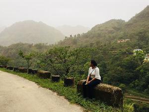 A Quick Gateway to Himachal (Sundernagar)