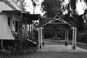 Lymond House Ooty 1/undefined by Tripoto