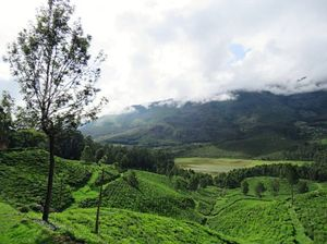 Munnar The Perfect Family Holiday Destination