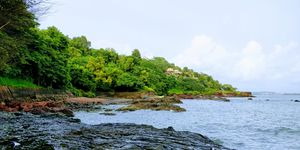 Want to travel to #Goa for free like me? Read on