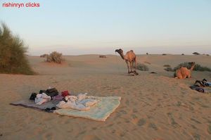 Ever slept in open sky in desert??