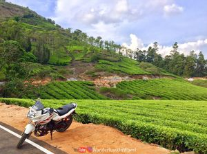 MEGHAMALAI -PLACES TO VISIT | AN UNEXPLORED HILL STATION | Wanderlust On Wheel