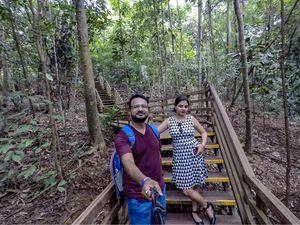 MacRitchie TREE TOP WALK | SINGAPORE | Wanderlust On Wheel