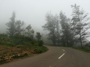 A weekend drive in ponumudi,kerala.