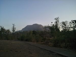 Pali Hill 1/undefined by Tripoto