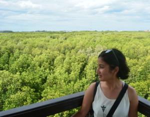 Mangrove Pranburi Pran Buri Prachuap Khiri Khan Thailand 1/6 by Tripoto