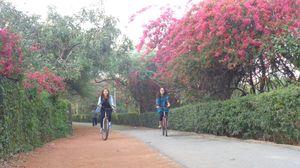 Kamla Nehru Ridge 1/1 by Tripoto