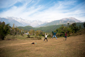 An Offbeat Weekend Escape Through The Tea Estates Of Palampur And Pottery Village Of Andretta