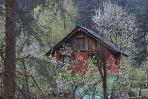 Kasol: A Jampot of Summertime Stories