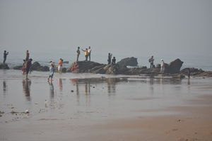 Rama Krishna Beach 1/undefined by Tripoto
