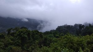Solo trip to Goa during Monsoon