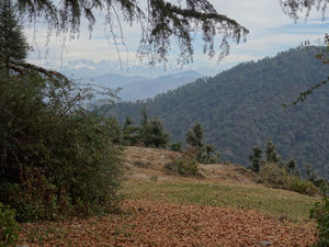 Hidden Wonders of Viraatkhai