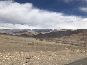 Ladakh in March :