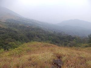 Trek of all Terrains - Kumara Parvatha