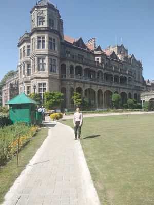Bromance At Shimla , Exploring Shimla Town. Spring season adding the magic all over.
