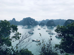 Ha Long Bay, Vietnam - A Beautiful Natural Wonder with Thousands of Towering Limestone Islands