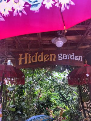 Luwak Coffee In Hidden Garden Agriculture Bali