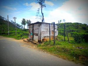 Journey To Bambaragala, Badulla, Sri Lanka.