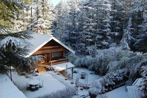 Fancy a Chalet Stay in Swiss Alps? This Resort Near Shimla Will Give You The Same Feels!