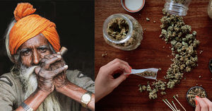 Marijuana Beyond Himalayas: India's Weed Hotspots That Are Not In Himachal