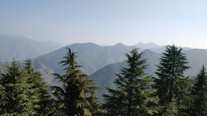 Lal Tibba Scenic Point 1/undefined by Tripoto
