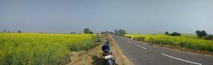 Farukh Nagar 1/undefined by Tripoto