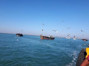 Gujarat Tour Part 2: Somnath to Dwarka (2 Days)