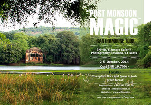 Ranthambore Photo Tour
