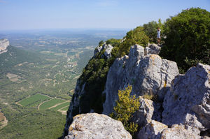 Le Pic St Loup 1/undefined by Tripoto