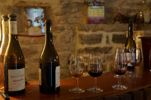 Wineries in Le Pic St Loup 1/4 by Tripoto