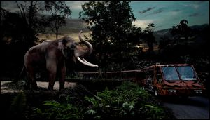 All You Need To Know About The Night Safari In Singapore