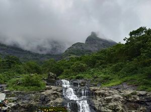 Serenity and Serendipity at Malshej Ghat