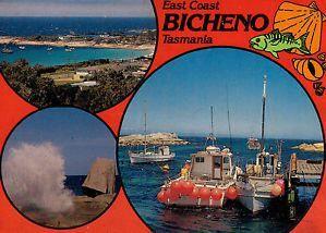 Bicheno 1/undefined by Tripoto