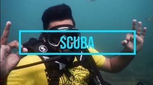 SCUBA : Diving Therapy! @Netrani Island
